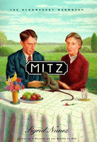 Download Mitz